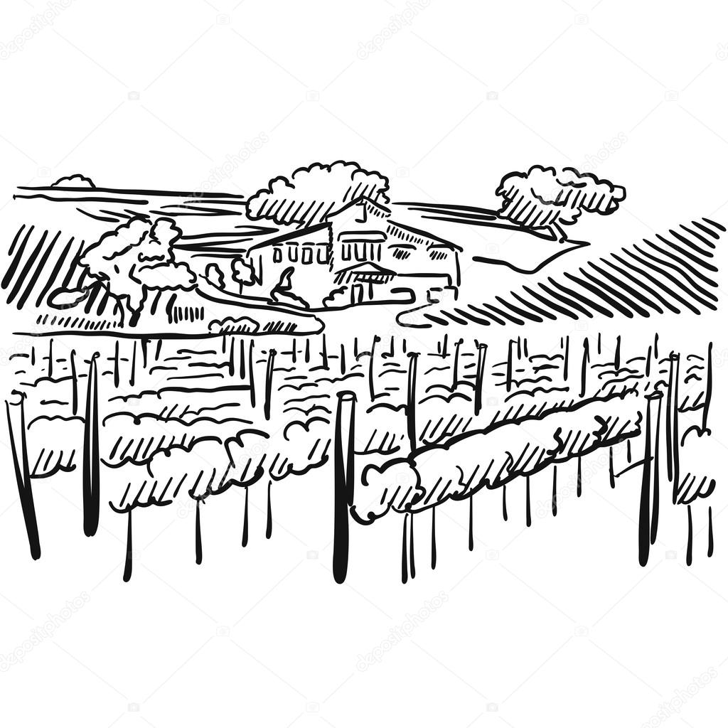 1024x1024 Californian Vineyard With Hills And House Stock Vector Mail