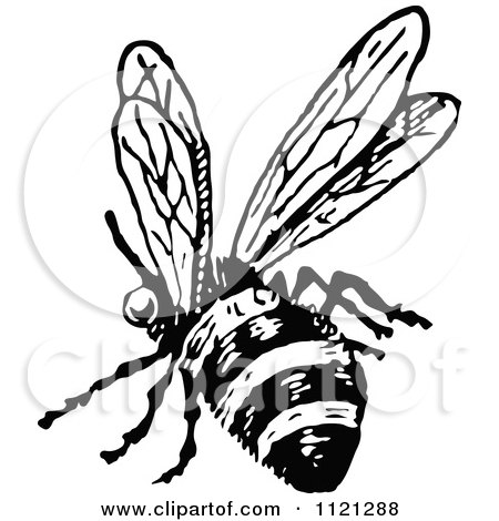 450x470 Clipart Of A Retro Vintage Black And White Drone Bee