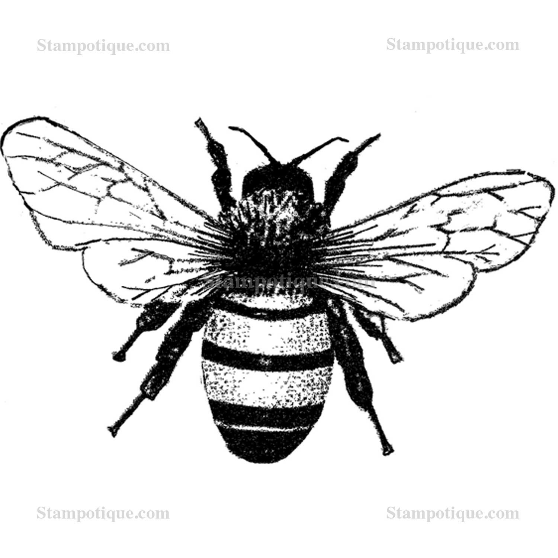 1500x1500 Medium Bee W Tiny Bee
