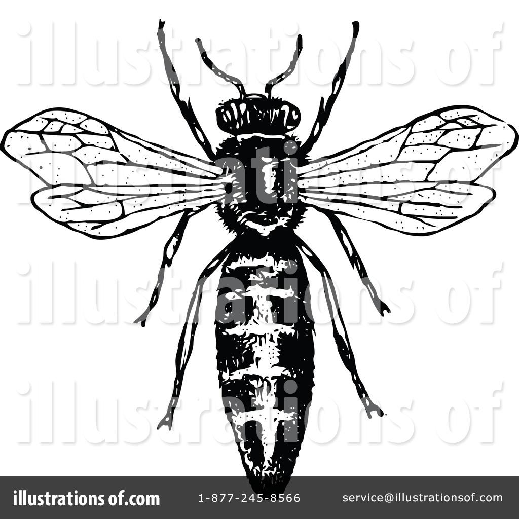 1024x1024 Bee Clipart