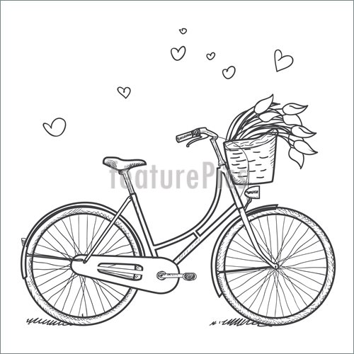 500x500 Vintage Bicycle With Flowers Illustration