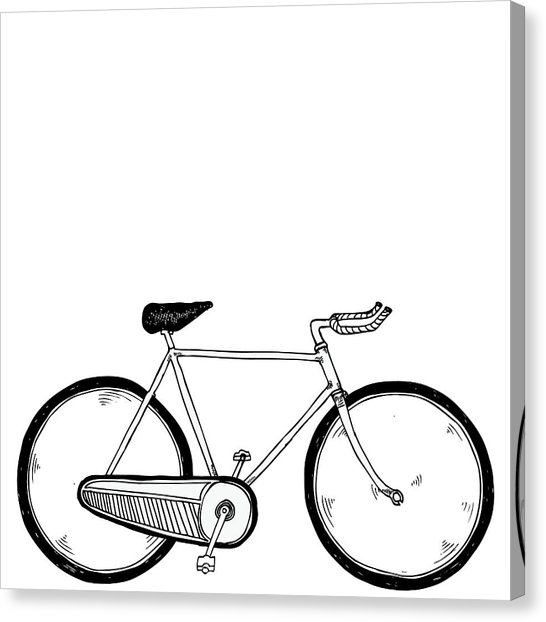 546x622 Vintage Bike Drawing By Karl Addison