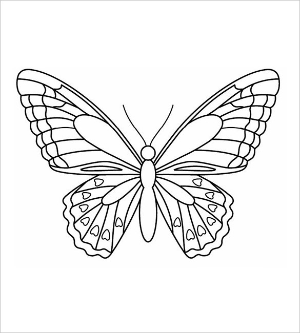 Vintage Butterfly Drawing At GetDrawings