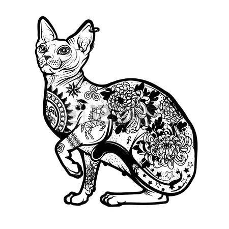450x450 443 Sphynx Cat Cliparts Stock Vector And Royalty Free