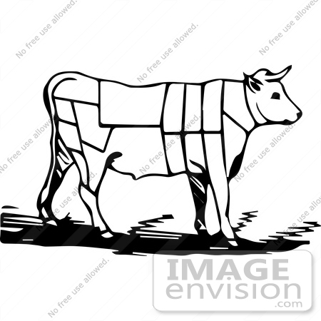 450x450 Vintage Clipart A Black And White Cow With Butcher Sections