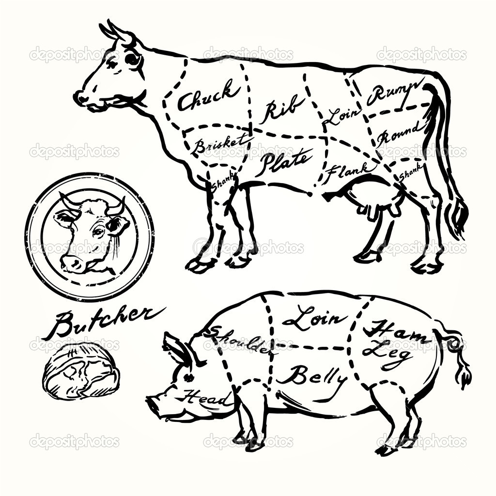 1024x1024 Vintage Pig Illustration