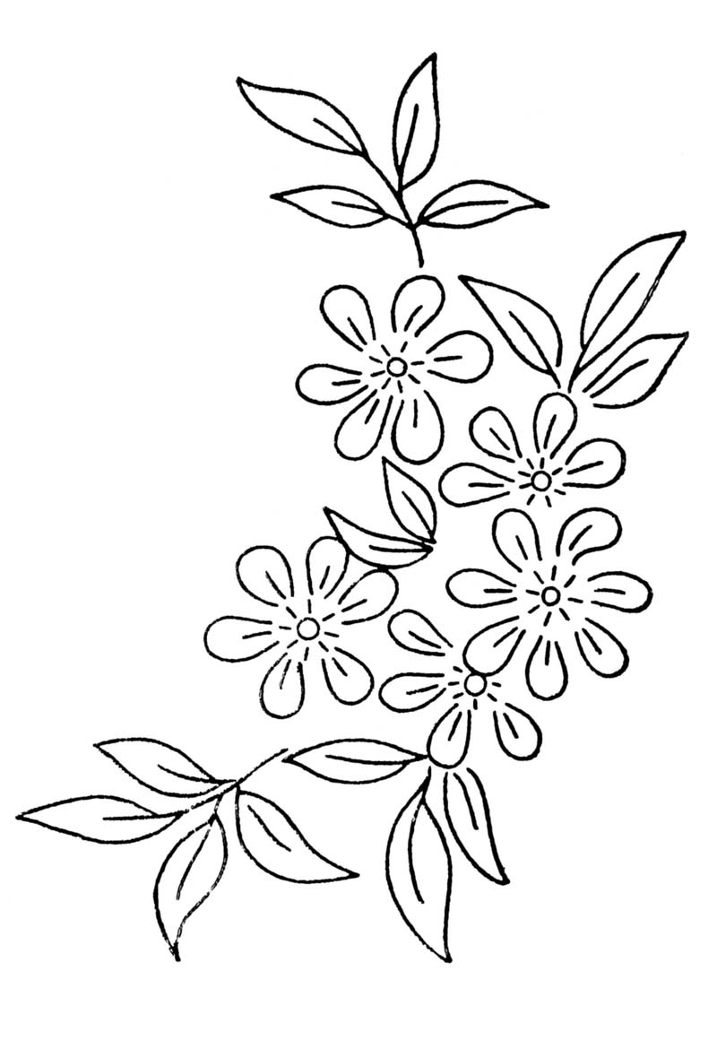 800x1160 Free Embroidery Transfer Patterns Vintage Flowers