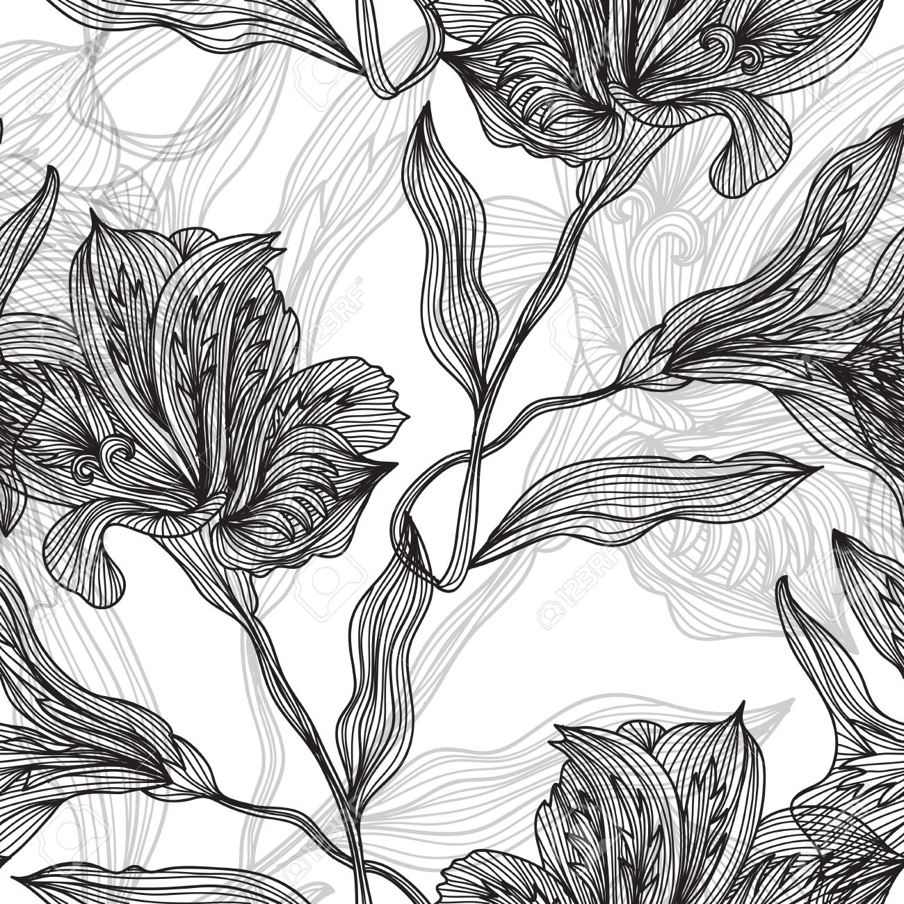 1300x1300 Botanical Illustrations Black And White