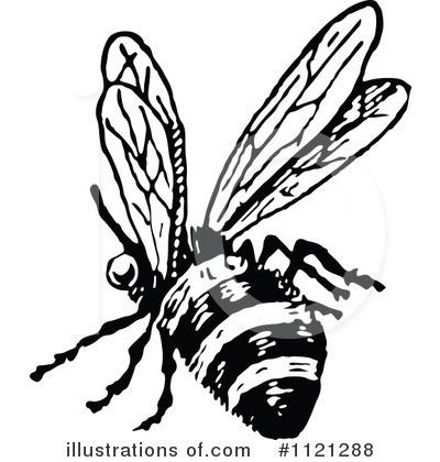 Vintage Honey Bee Drawing At Getdrawings Com