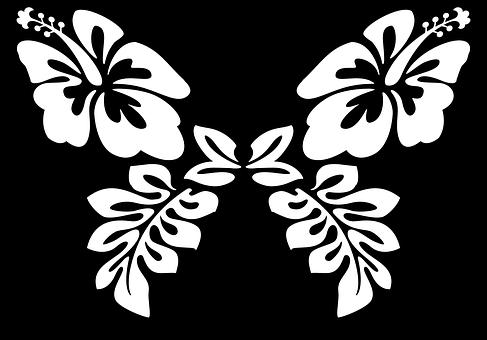 487x340 Moth