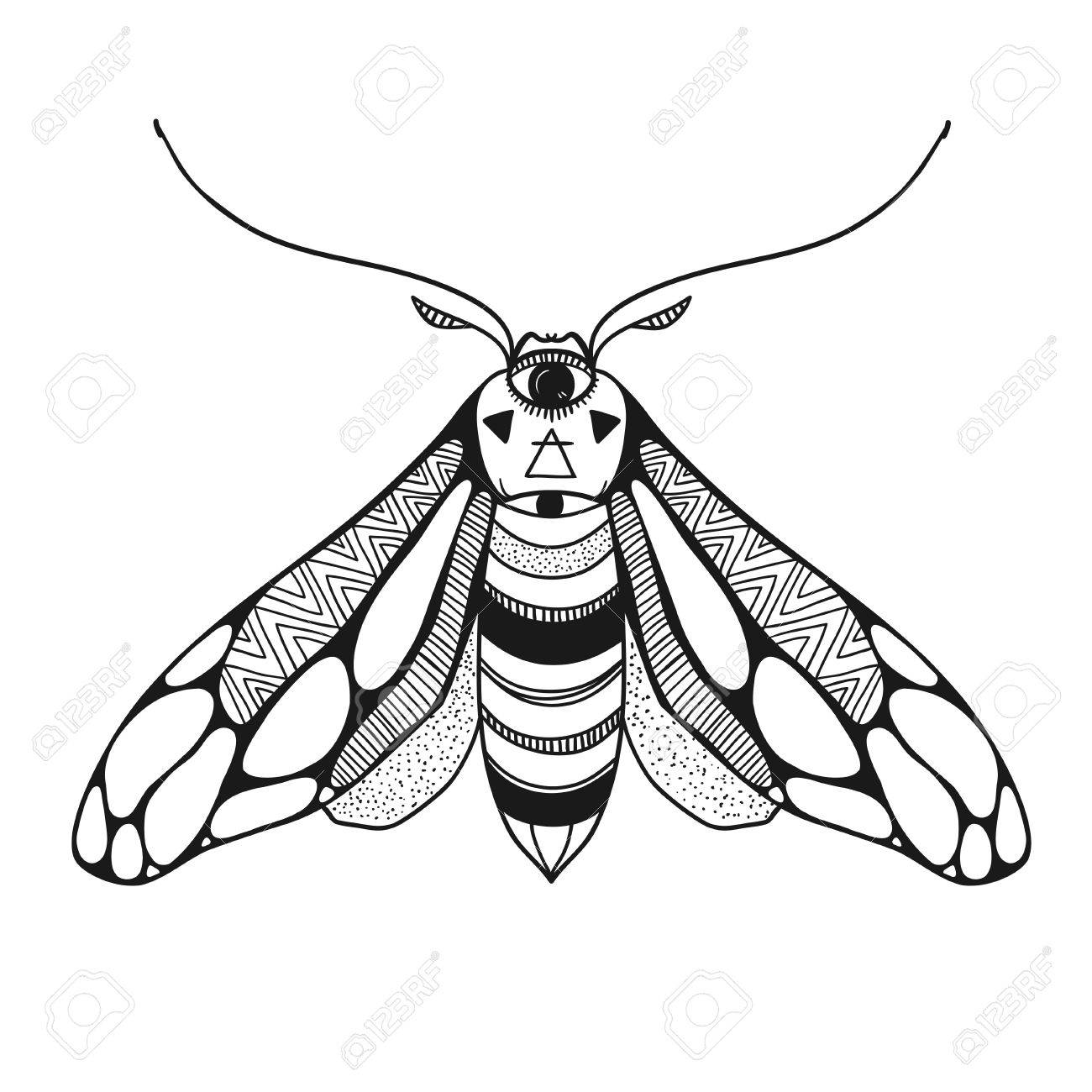 1300x1300 Vector Illustration Of A Moth With Ornamental Wings, Decorative