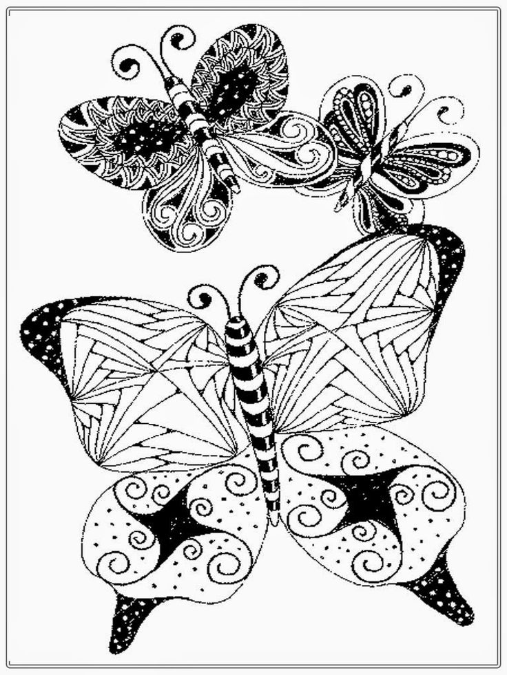 736x981 3828 Best Butterflies, Dragonflies Images On Coloring
