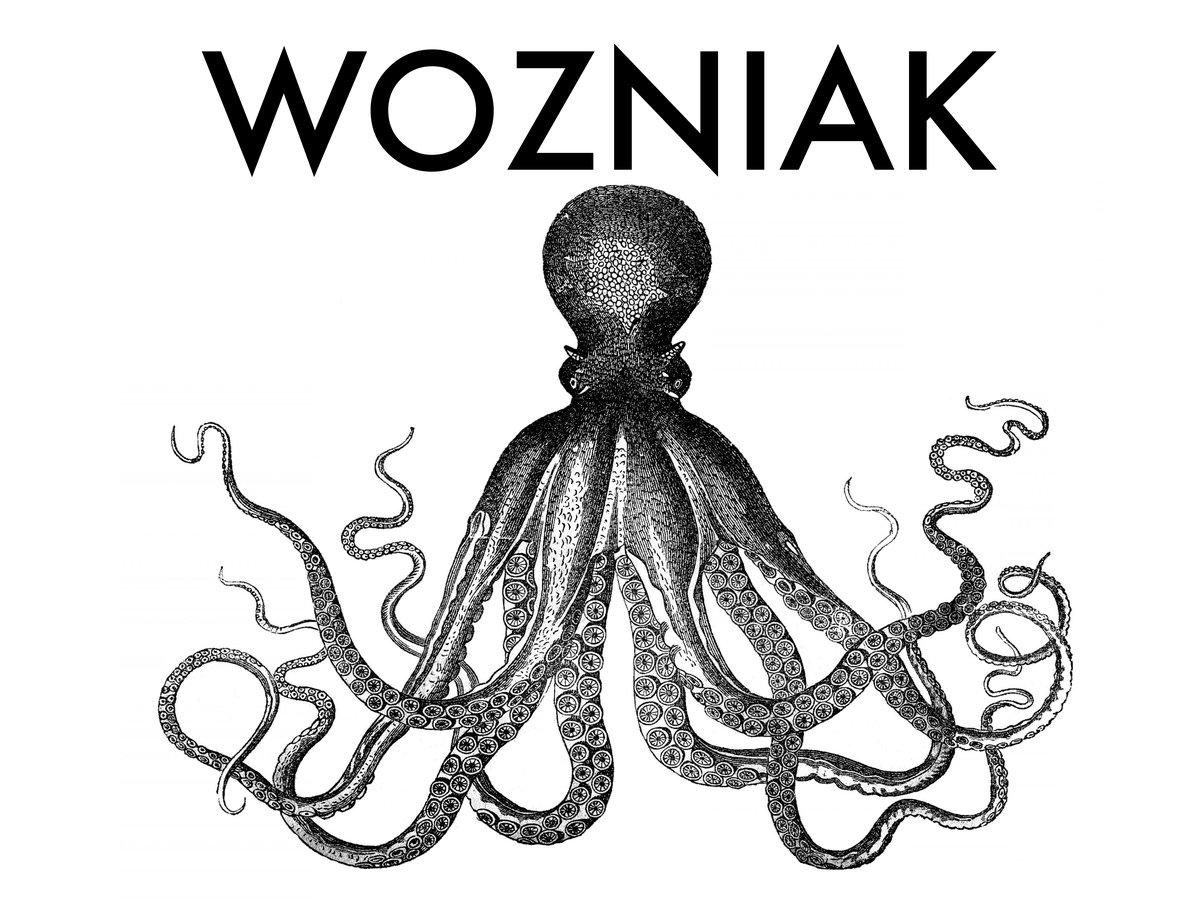 1200x920 Shader Wozniak
