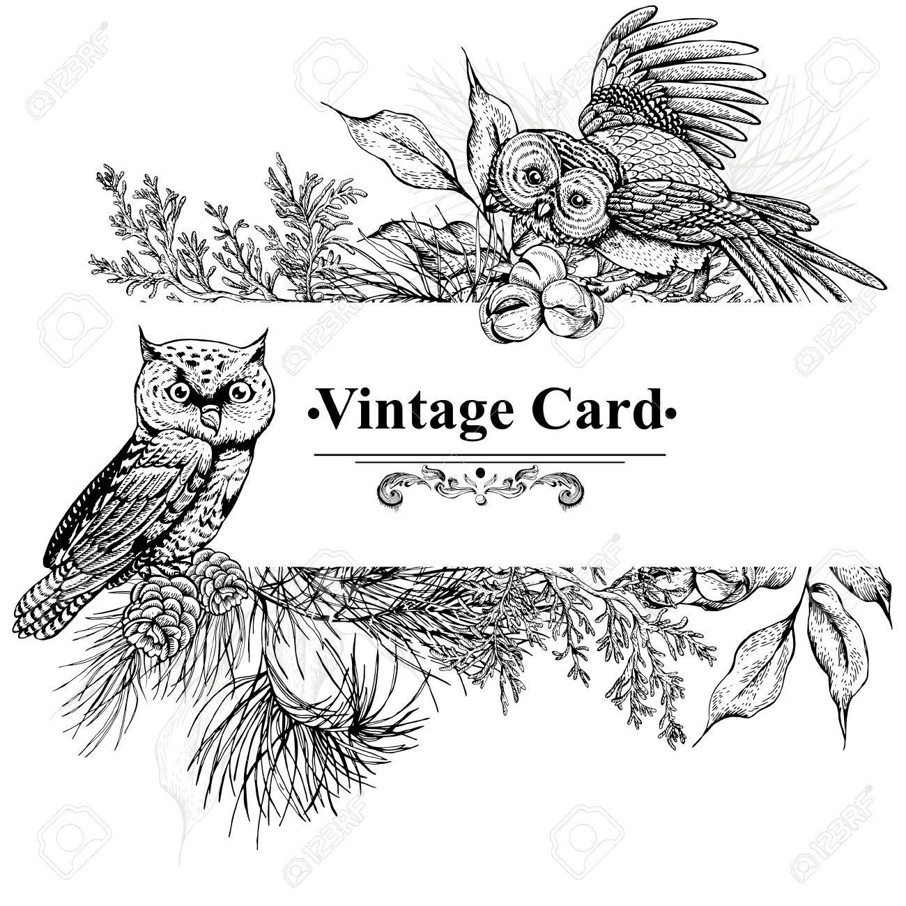 1300x1300 Monochrome Vintage Greeting Card With Owls, Spruce Branches