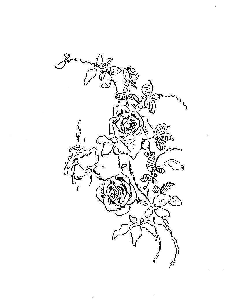 817x1050 Digital Stamp Design Free Flower Digital Stamp Vintage Rose