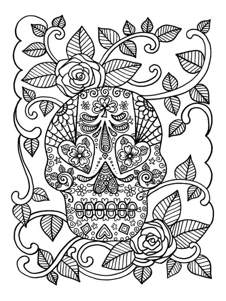 Vintage Skull Drawing