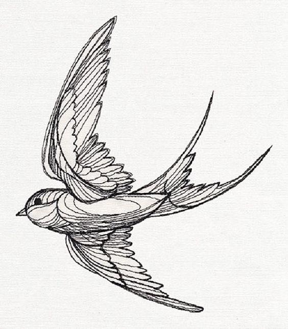 Vintage Sparrow Drawing