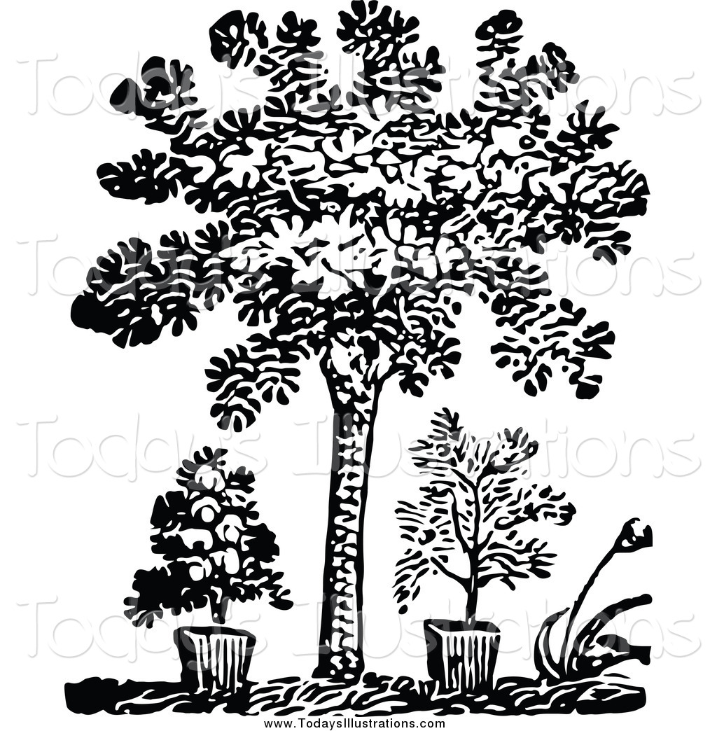 1024x1044 Clipart Of A Black And White Tree And Potted Plants By Prawny