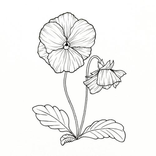 500x500 Violet Artwork Tumblr
