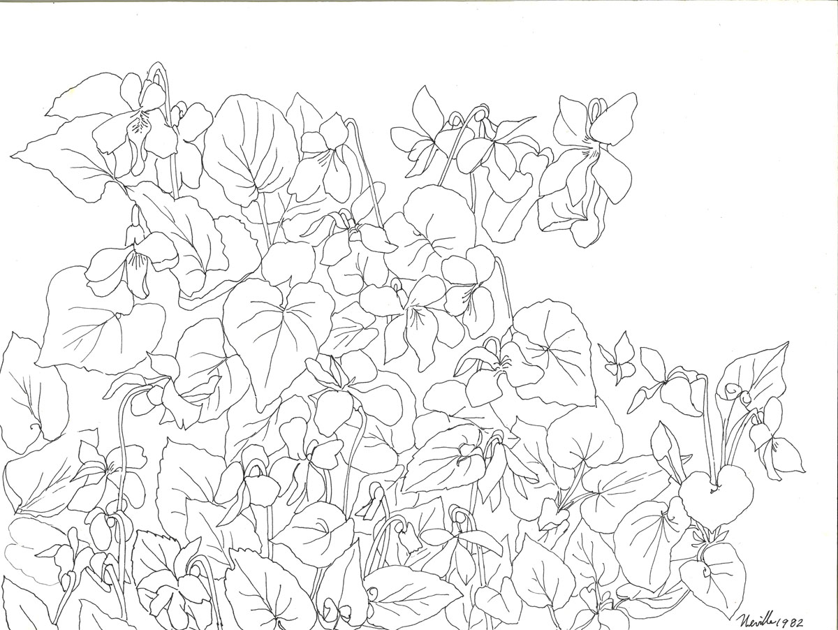 1200x902 Drawings Page 2 Beth Neville