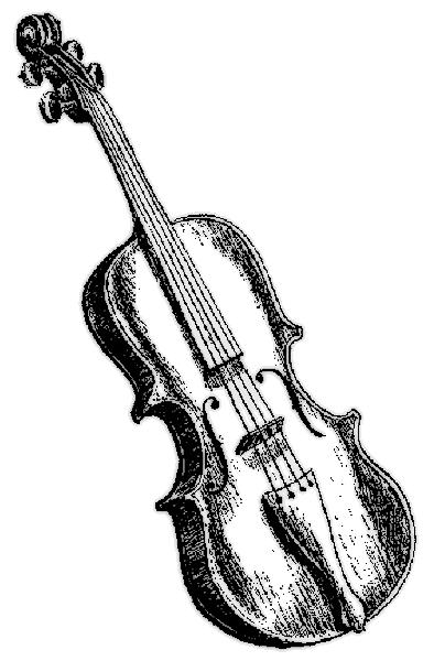 394x600 Violin 3
