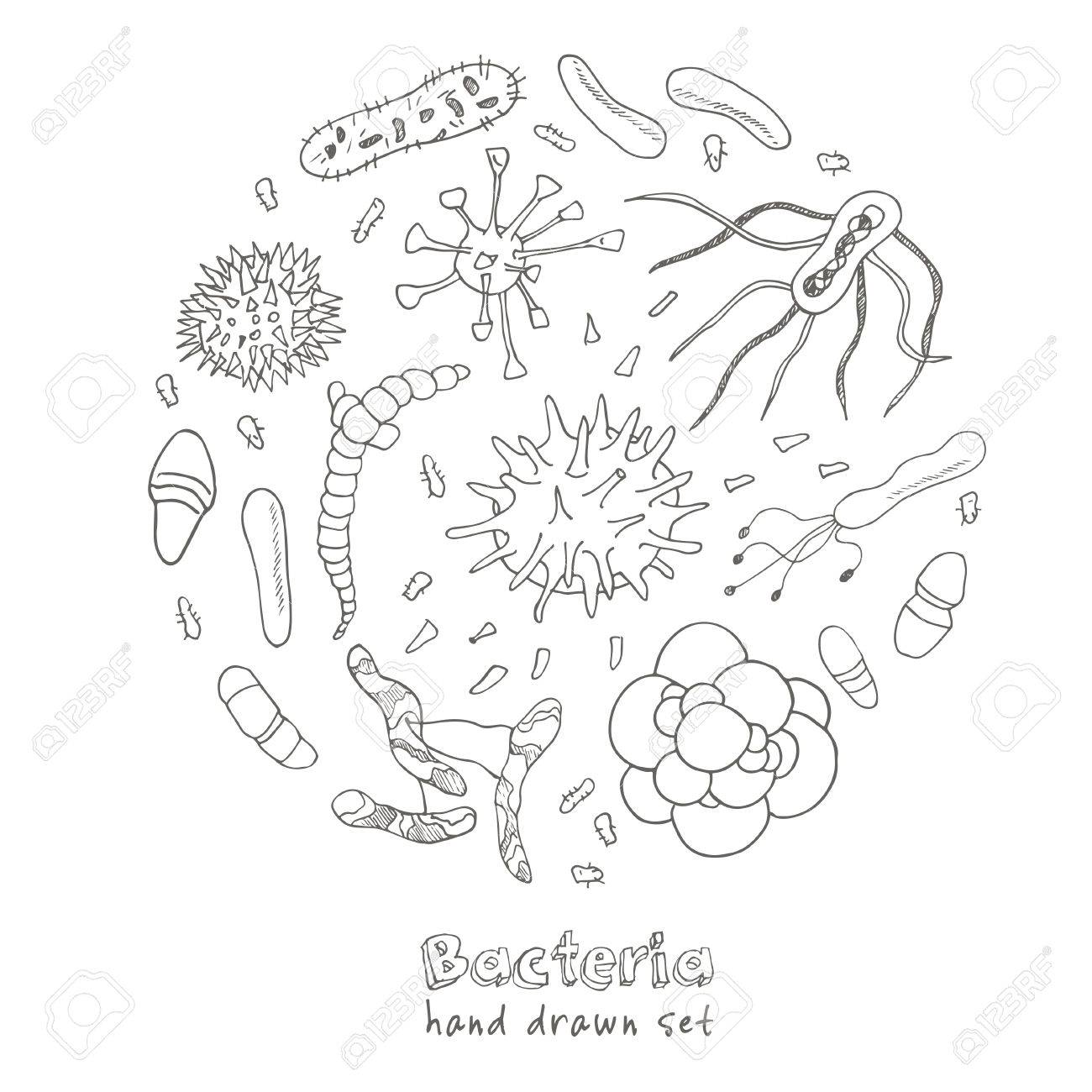 1300x1300 Bacteria Virus Icons Set. Sketches. Hand Drawing. Vector