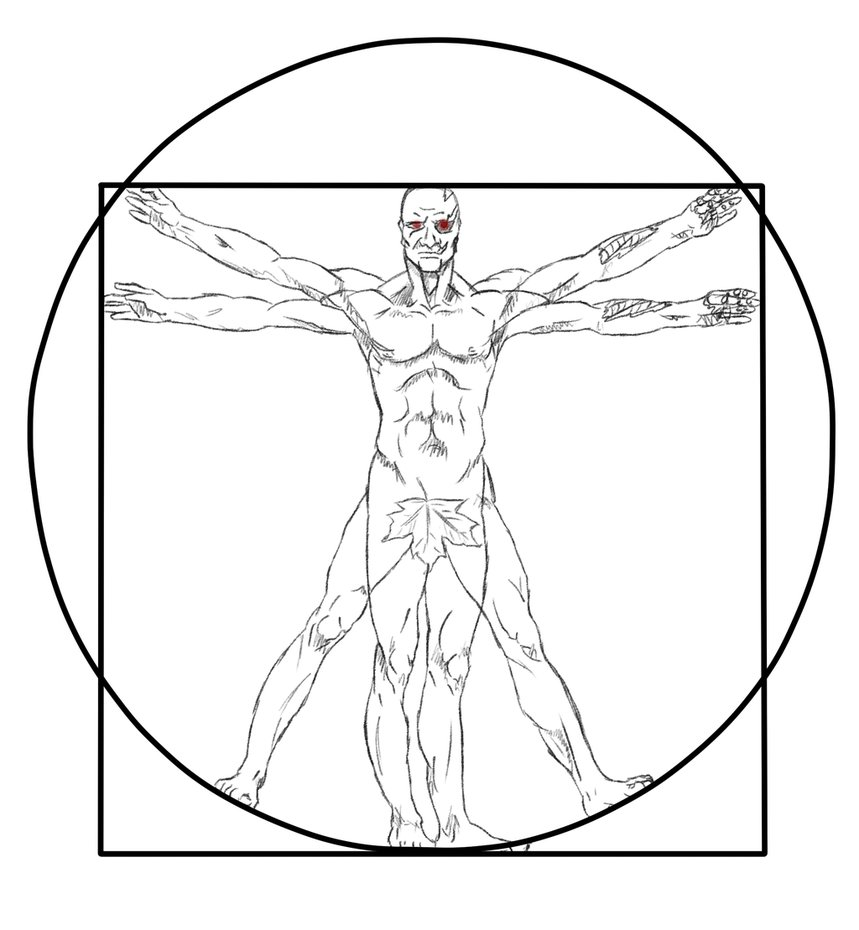 Vitruvian Man Drawing