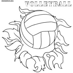 Volleyball Court Drawing At Getdrawingscom Free For Personal Use