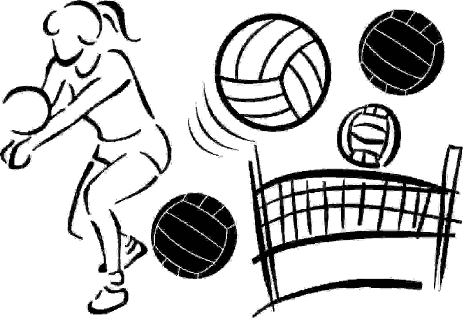 how to draw a volleyball net and ball
