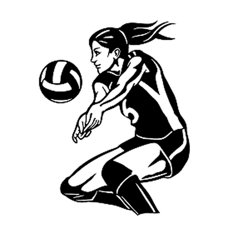 800x800 Buy Volleyball Silhouette And Get Free Shipping