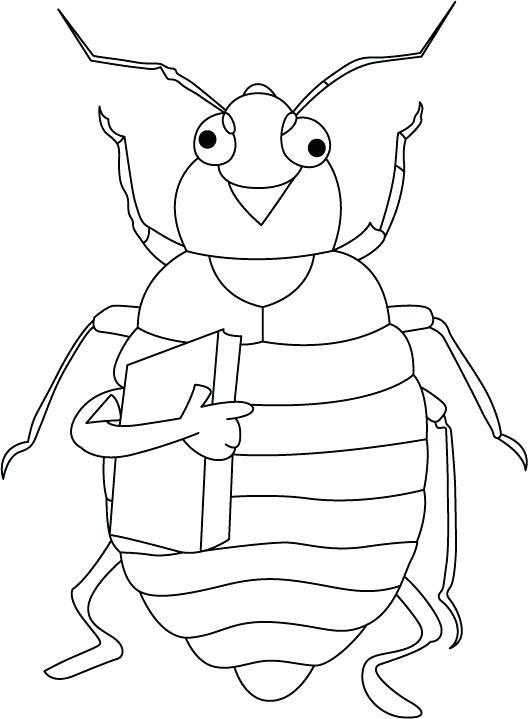 Vw Bug Drawing At Getdrawings Com