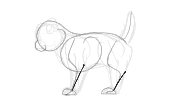 600x362 How To Create A Walking Kitten Animation In Adobe Photoshop