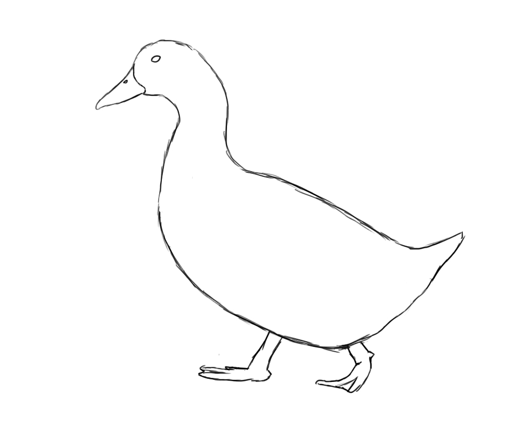 1024x819 How To Draw A Duck