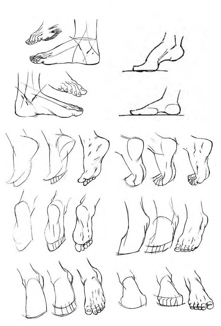 736x1086 84 Best Art Anatomy Legs Amp Feet Images On How