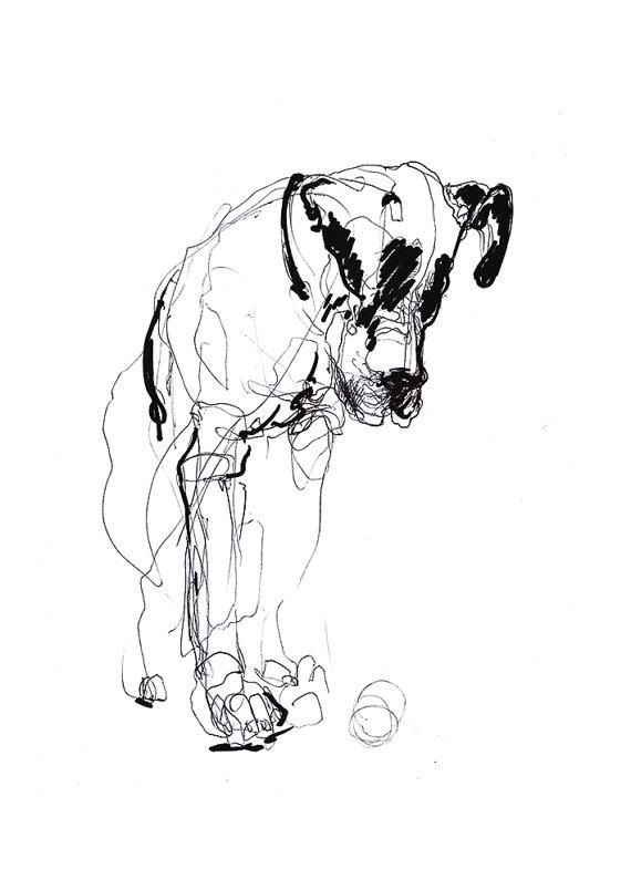 570x804 Dog Expressive Drawing Digital Print A4 A3 8x11 11x16.