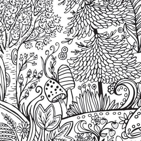 480x480 Giant Coloring Poster In Forest Print