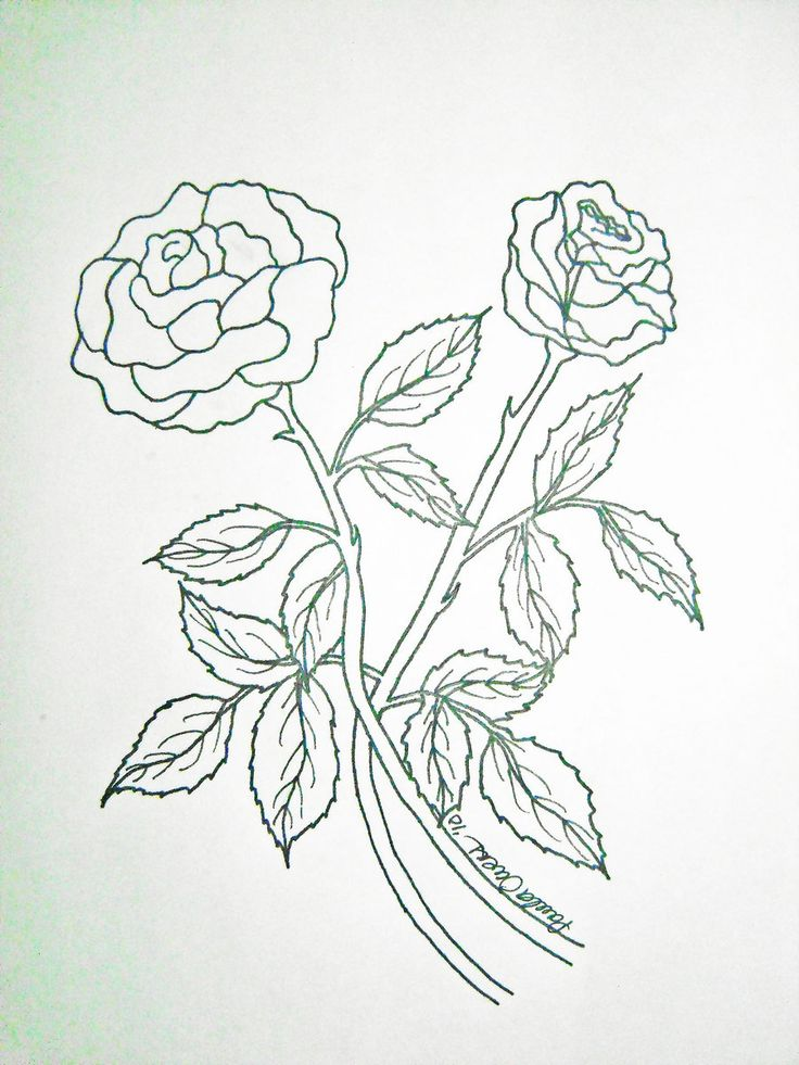 Wallpaper Hd Drawing