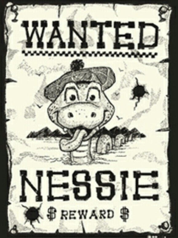 Wanted Poster Drawing