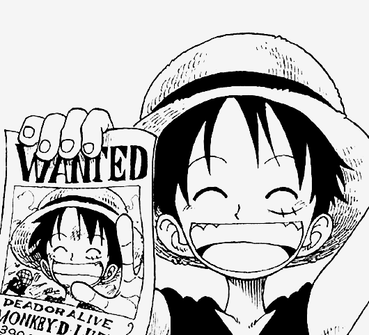 530x482 Luffy And His First Wanted Poster One Piece Monkey