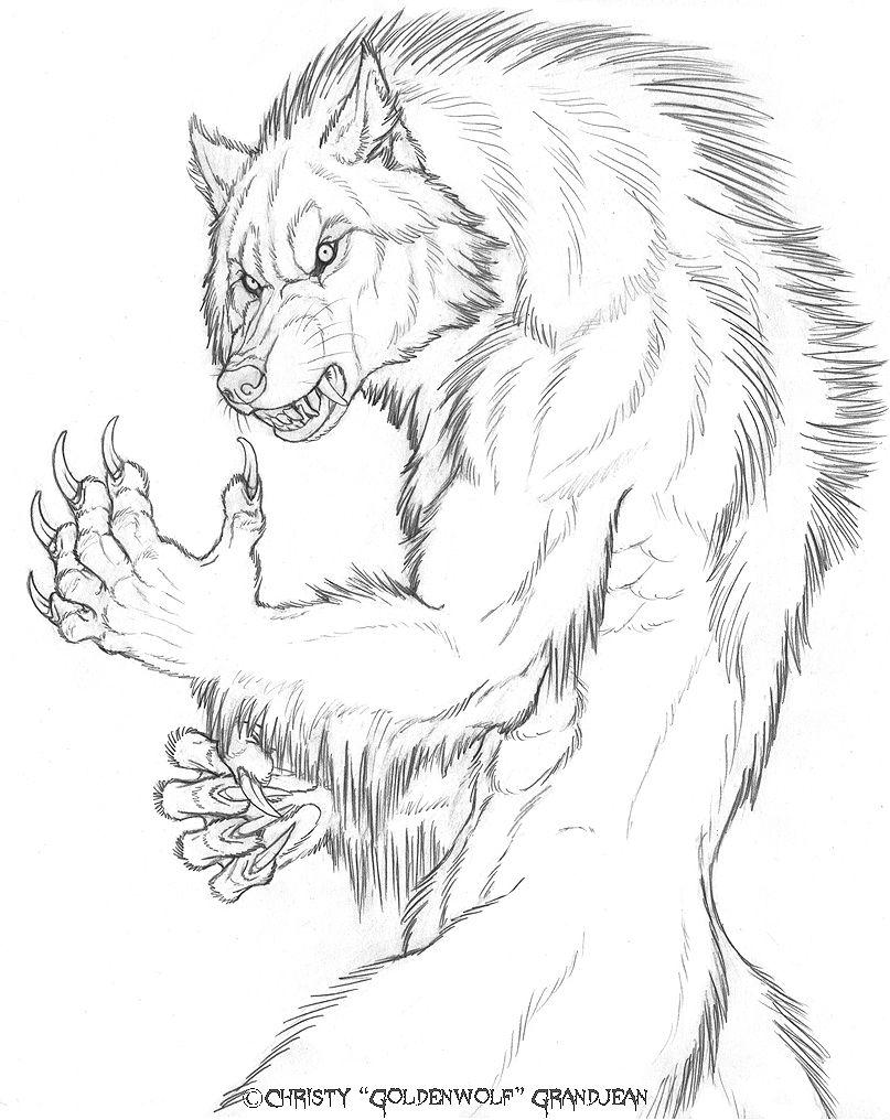 807x1016 The Art Of Goldenwolf Christy
