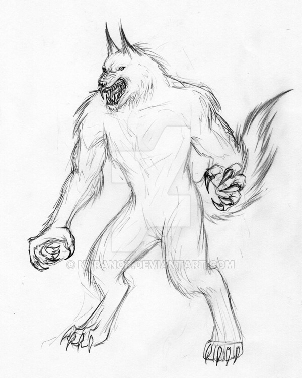 600x750 Werewolf 4 By Nyranor