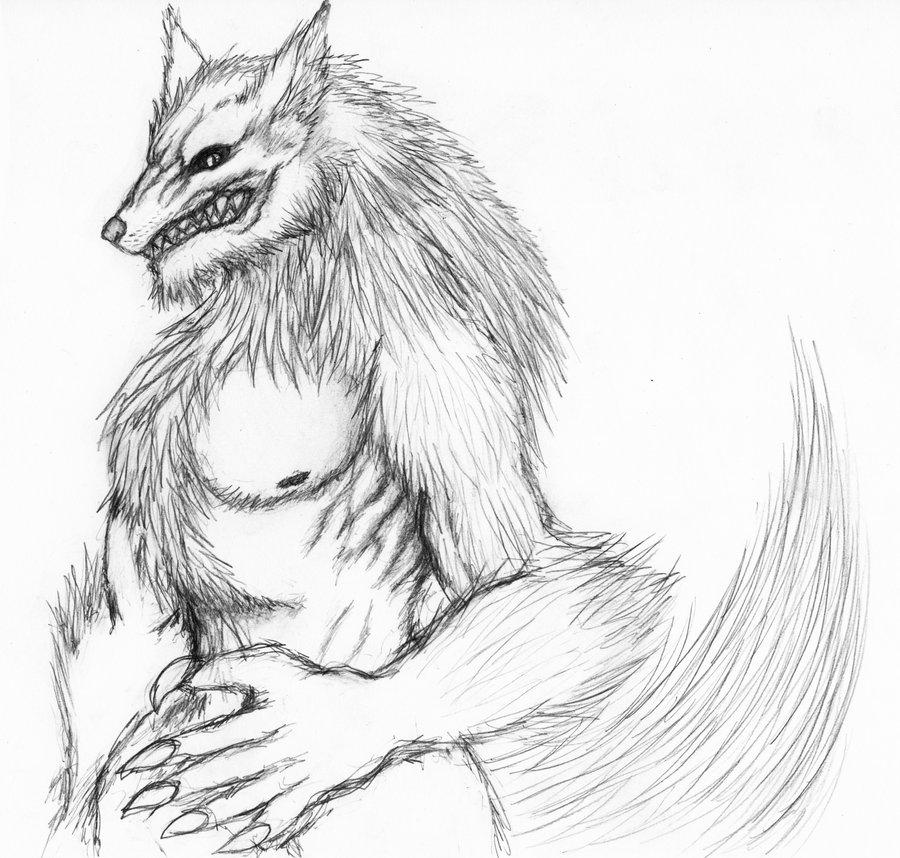 900x858 Werewolf Sketch By Dyndase