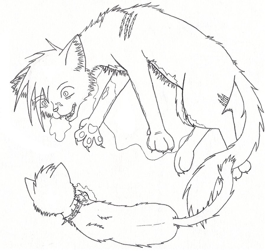 900x852 Warriors Cats Coloring Pages