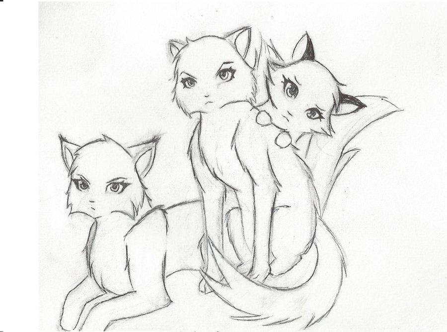 900x668 Warrior Cats By Kelskar