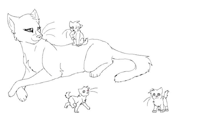 736x397 Fancy Warrior Cats Coloring Pages 66 For New Coloring Pages