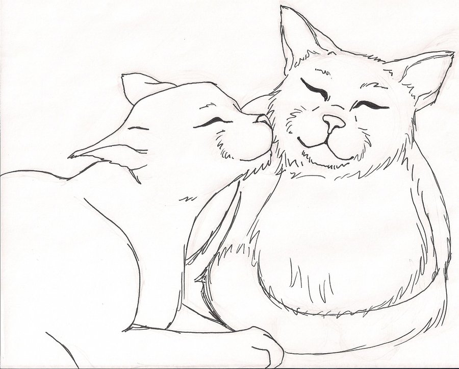 900x723 Warrior Cat Coloring Pages 287012
