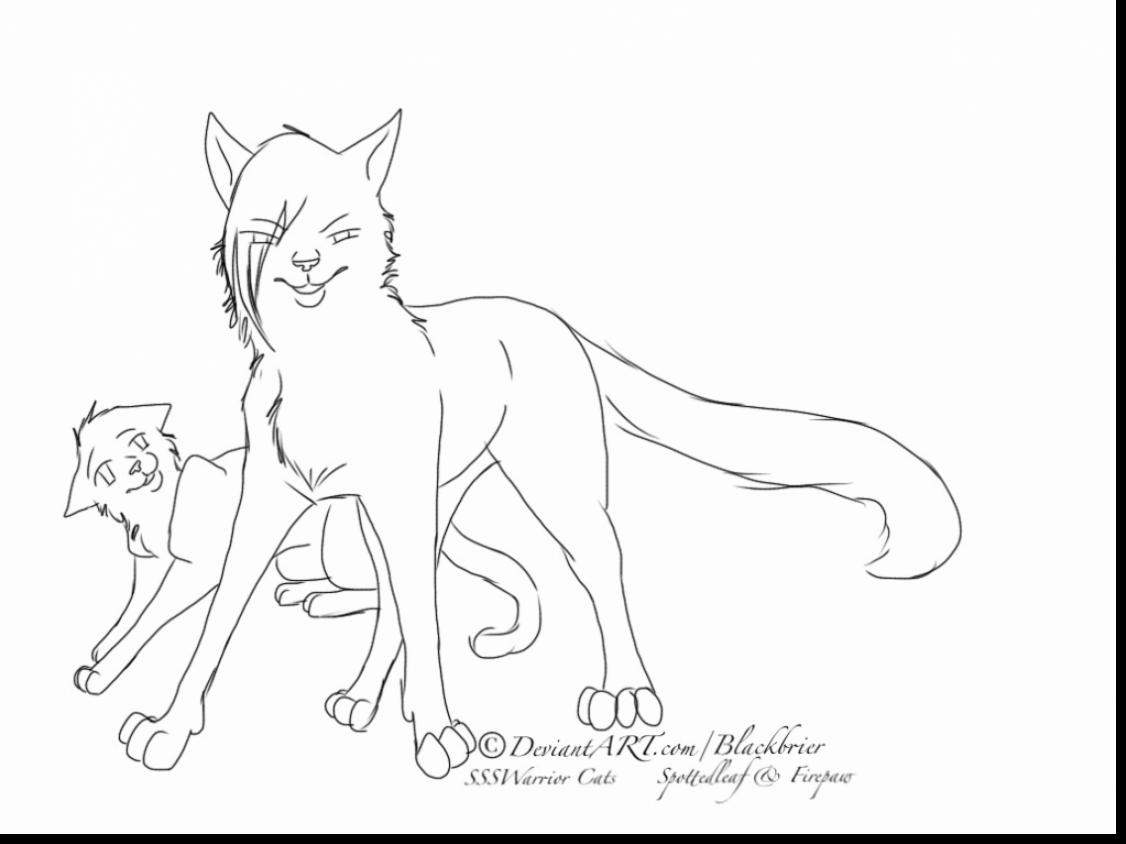 1126x844 Good Warrior Cats Couples Coloring Pages With Warrior Cat Coloring