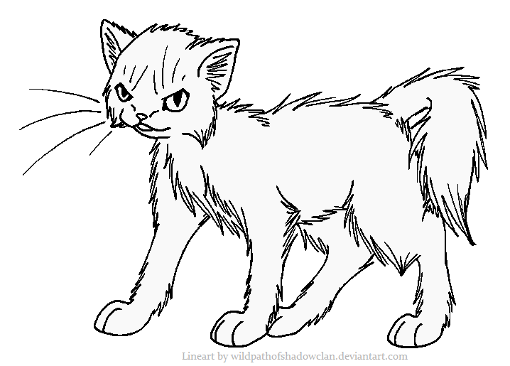 718x515 Evil Longhaired Warrior Lineart By Wildpathofshadowclan