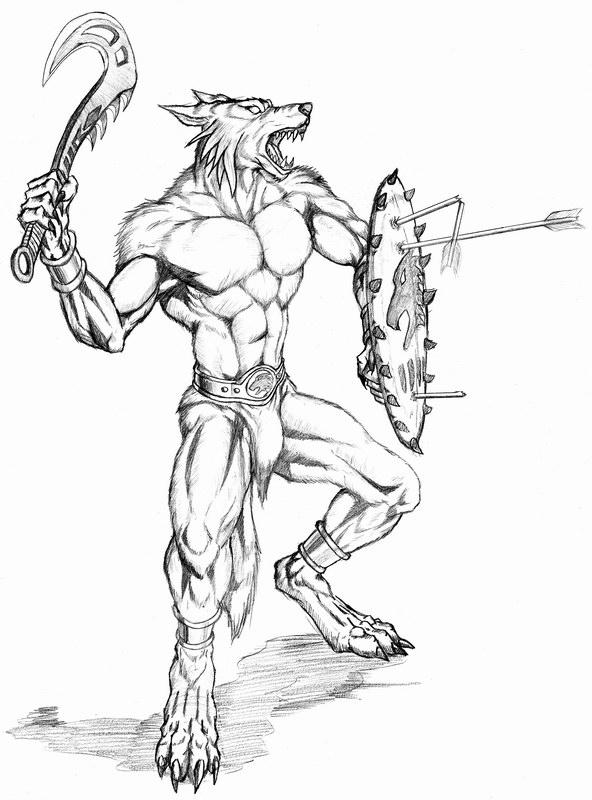 592x800 Werewolf Warrior With Shield By Wolflsi