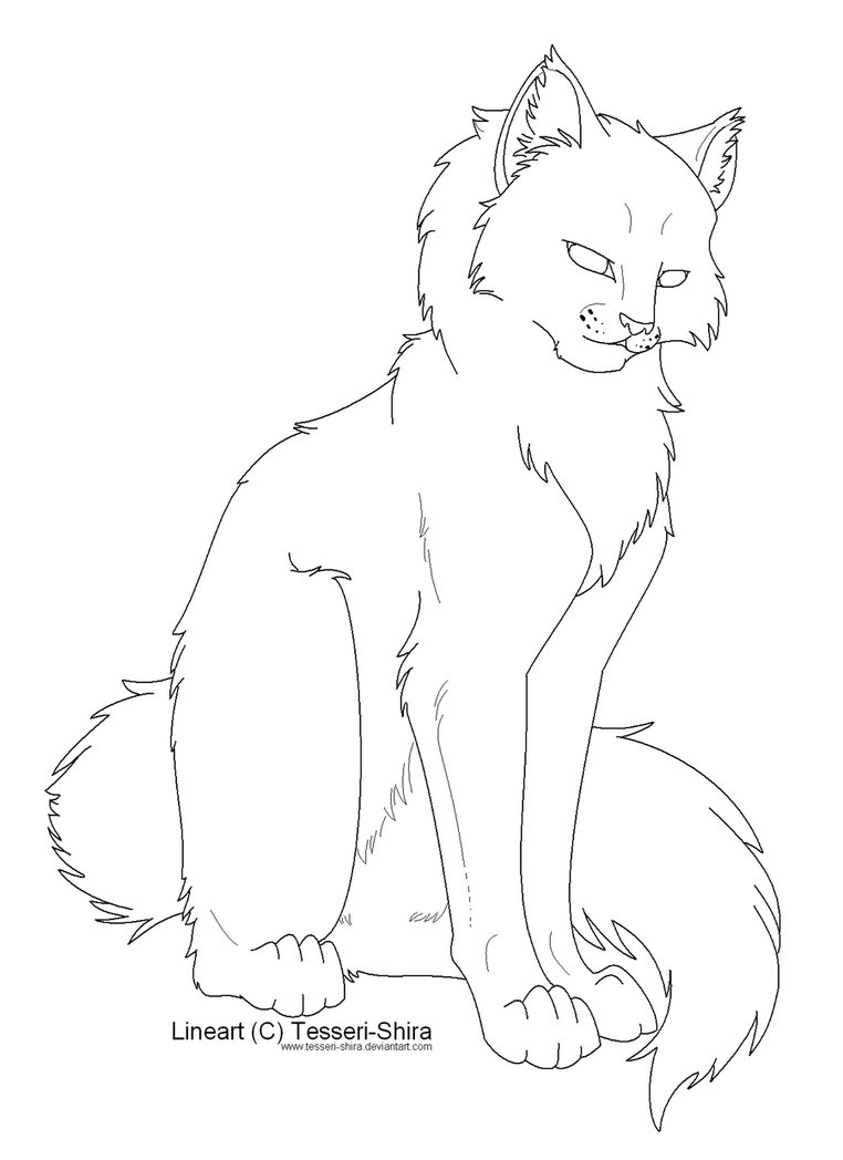 762x1048 Free Lineart Longhair Cat By Nova Nocturne On DeviantArt